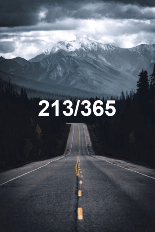 day 213 of the year 2019