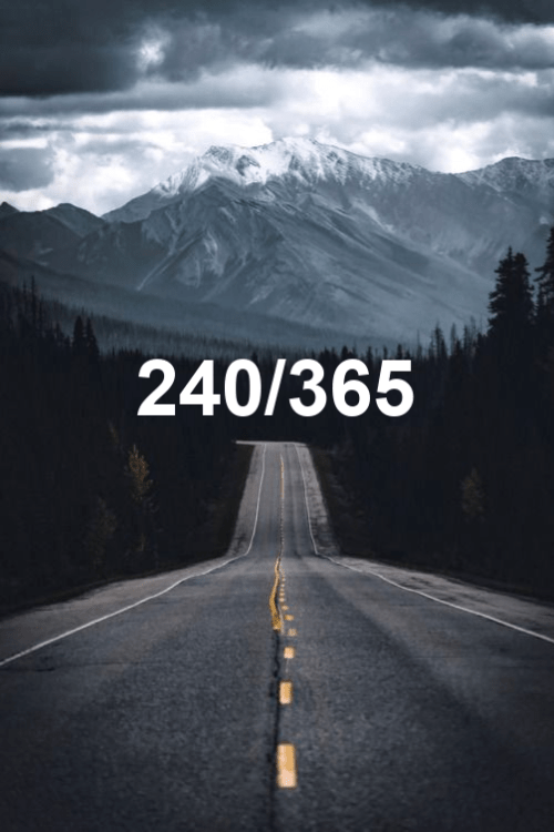 today is the 240th day of the year 2019