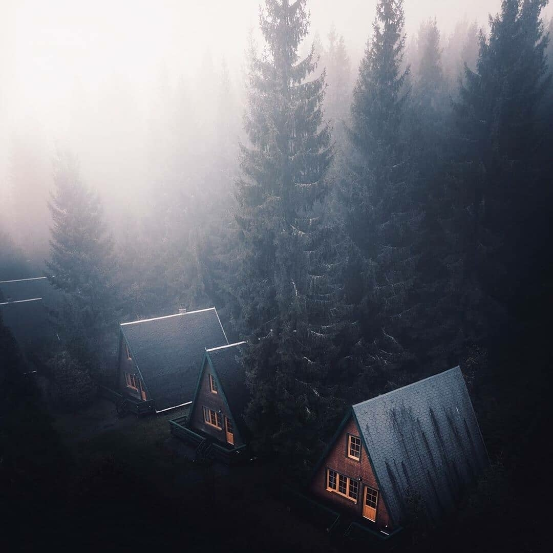 cabins in the mist