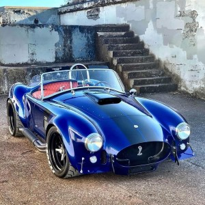 the manly life - Shelby Cobra