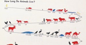 The Original Manifesto for Information Visualization and Pictorial Statistics: ISOTYPE Creator Otto Neurath's Pioneering 1930 Visual Language
