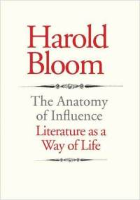 The Anatomy of Influence: Mapping the Labyrinth of Literature