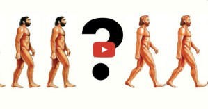 Why There Was No First Human