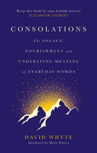 The Transfiguration of Aloneness: David Whyte on Longing and Silence