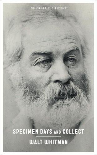 """Walt Whitman on the """"Meaning"""" of Art and How to Best Access the Poetic"""