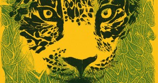 A Day in the Life of the Jungle: A Poetic Vintage Illustrated Ode to the Wilderness and the Glorious Diversity of Life on Earth