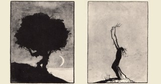Trees at Night: Stunning Rorschach Silhouettes from the 1920s