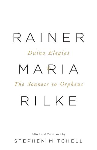 How to Live with Our Human Limitations: Physicist Brian Greene Reads and Reflects on Rilke's Profoundest Elegy