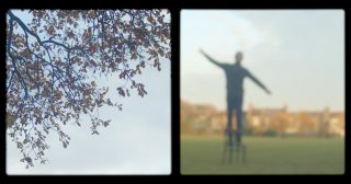 Proximity: A Meditative Tree-Inspired Visual Poem About Reaching for Something You Can't Quite Grasp