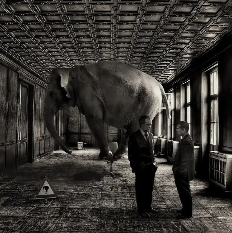 Elephant in the corner - Google