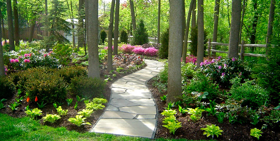 QuickTip: What should I do about that shady part of my ... on Shady Yard Ideas  id=85064