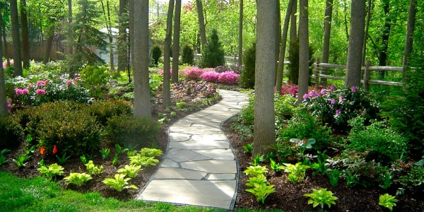 QuickTip: What should I do about that shady part of my ... on Shady Yard Ideas id=30606