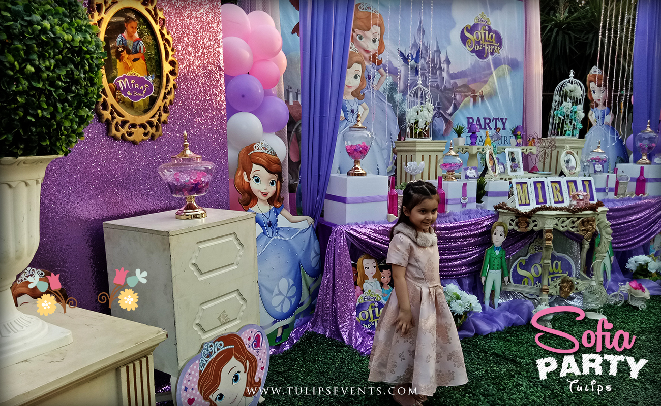 Sofia The First Decorations Ideas