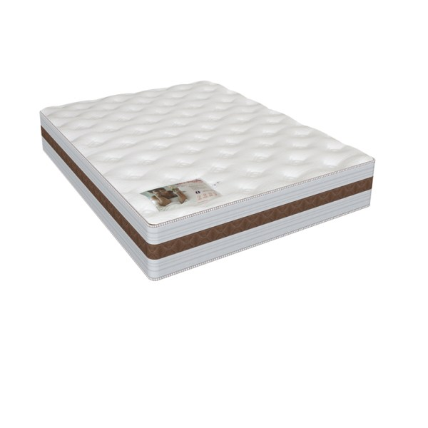 Rest Assured St Andrews - Queen XL Mattress