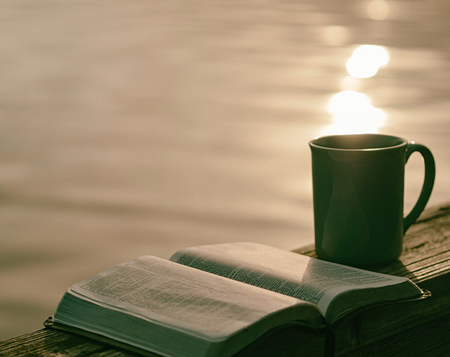 Green tea and a good book by a lake