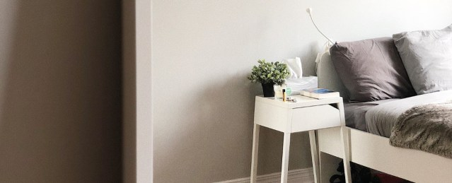 put a plant in your room to create a peaceful environment