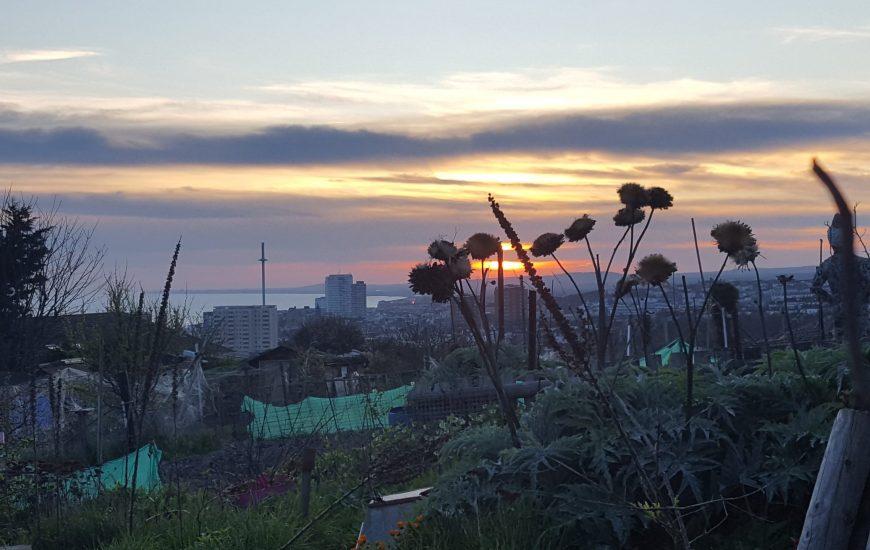 View over Brighton