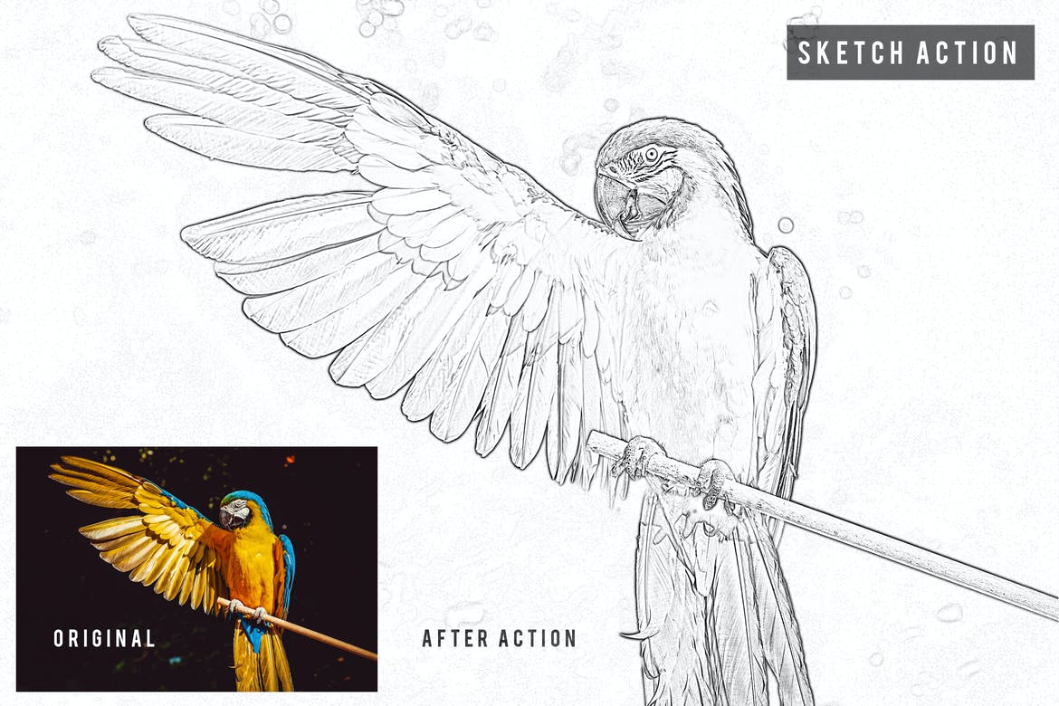 20 Pencil Sketch Photoshop Actions With Drawing Effects Theme Junkie