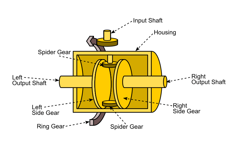 Internal Components of a Car Differential