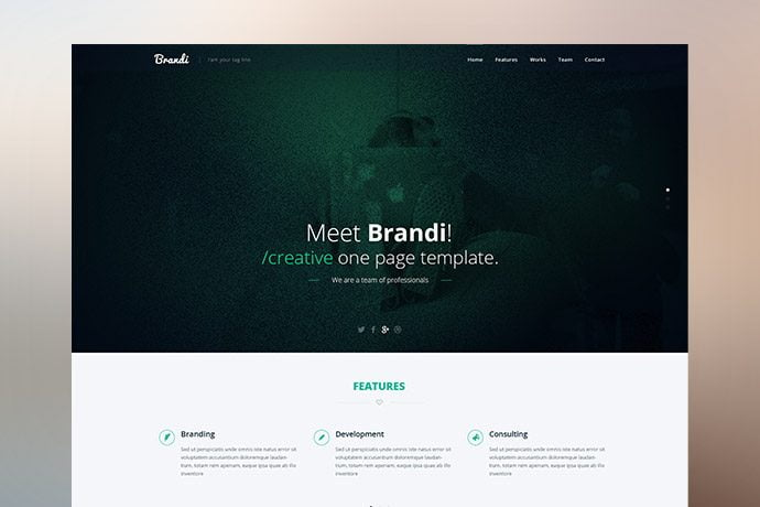 brandi_preview_demo