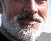 Gray Beard by Mr. Hepe