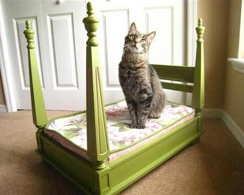 This DIY cat bed is only for the fanciest of felines. | www.themeowplace.com
