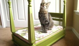 10 Crazy Awesome DIY Cat Beds