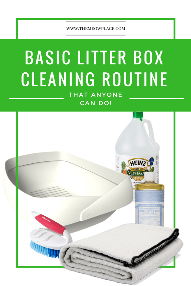 A basic litter box cleaning routine needs both a warm weather and a cold weather version. We've got both in our latest blog post! We'll show you how to get your cat's litter box sparkling clean in just minutes without creating a huge mess.