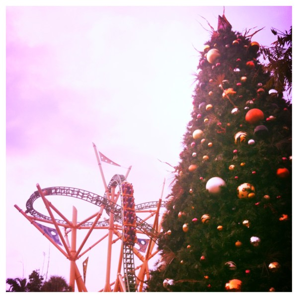 Christmas décor near Cheetah Hunt