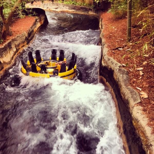 Busch Gardens Congo River Rapids