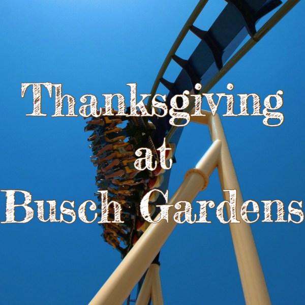 thanksgiving day busch gardens
