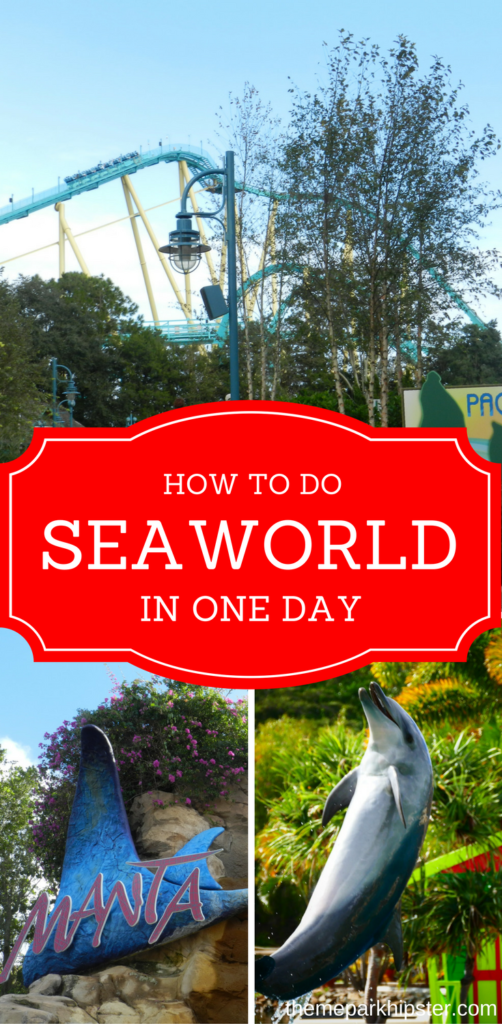 SeaWorld is a theme park that is great to do in one day while visiting Orlando. Dolphins and roller coasters.