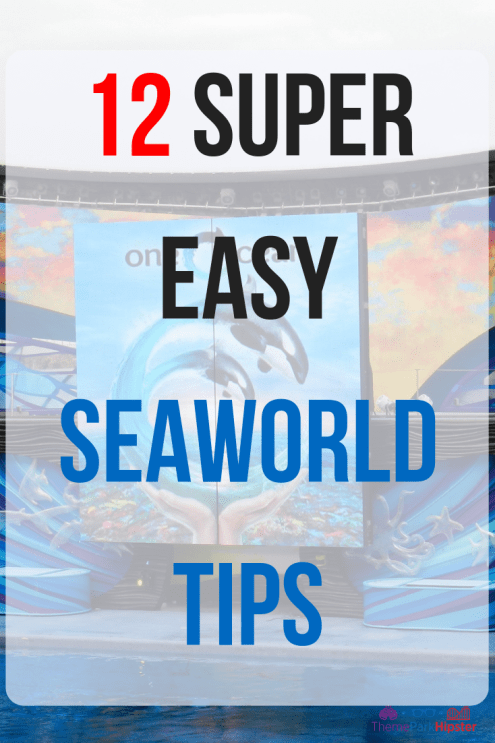 12 super easy Seaworld tips.  Shamu show in bright blue water.