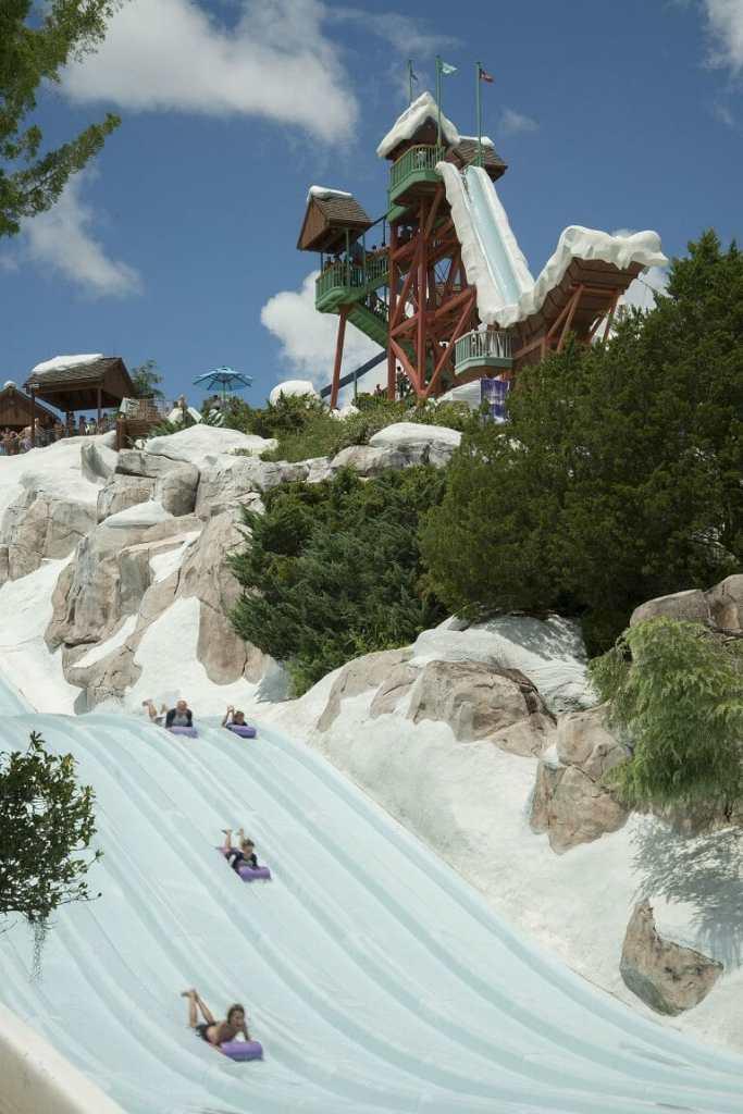 Toboggan Racers at Disney's Blizzard Beach
