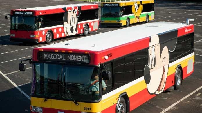 Walt Disney World Buses