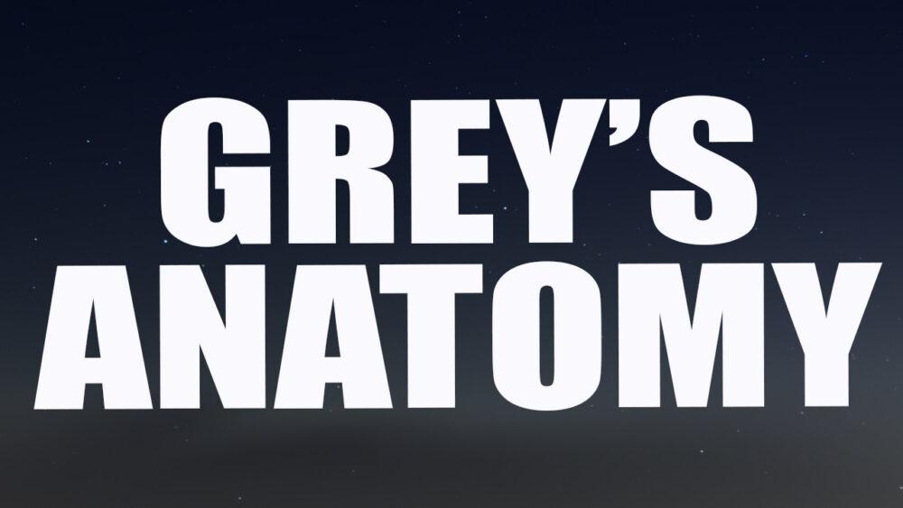Ausgezeichnet Greys Anatomy Kickass Fotos - Menschliche Anatomie ...