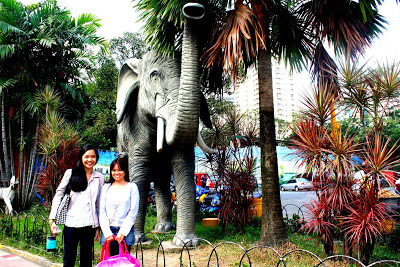 Yes! There Is Still A Manila Zoo