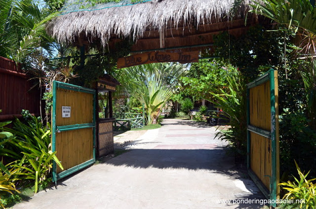 Where to Stay in Siquijor:  Blue Wave Inn