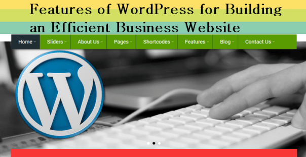 Features of WordPress for Building an Efficient Business Website