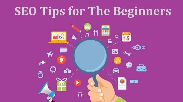 SEO Tips for The Beginners
