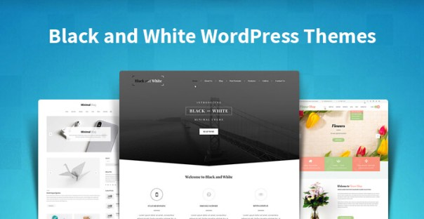 Black and White WordPress Themes