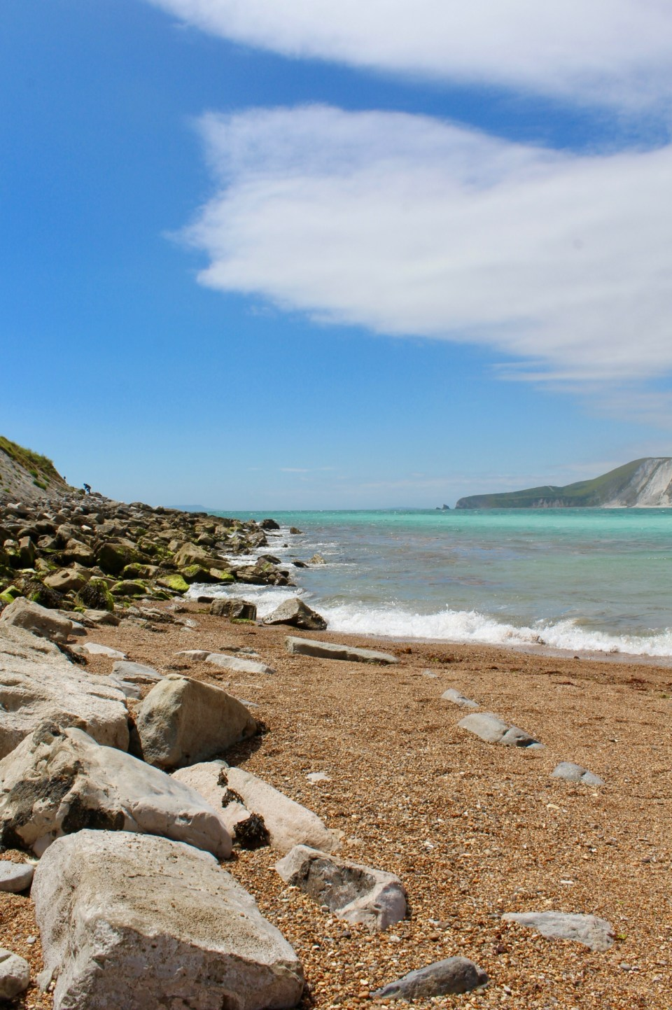mare Dorset Jurassic Coast