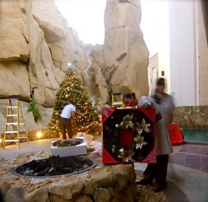 Christmas in Cabo