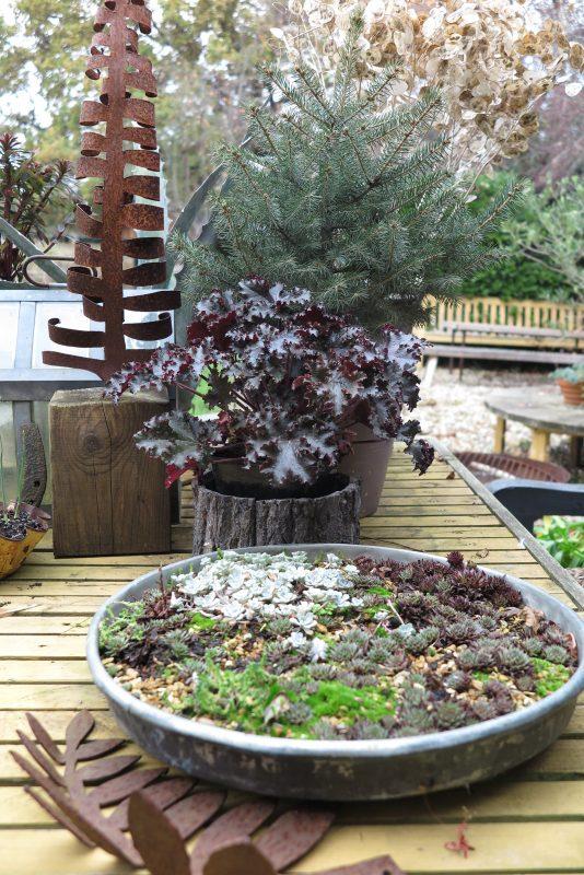Winter garden 'tablescape'