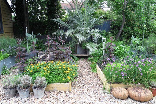 Use bins and raised beds to grow veg