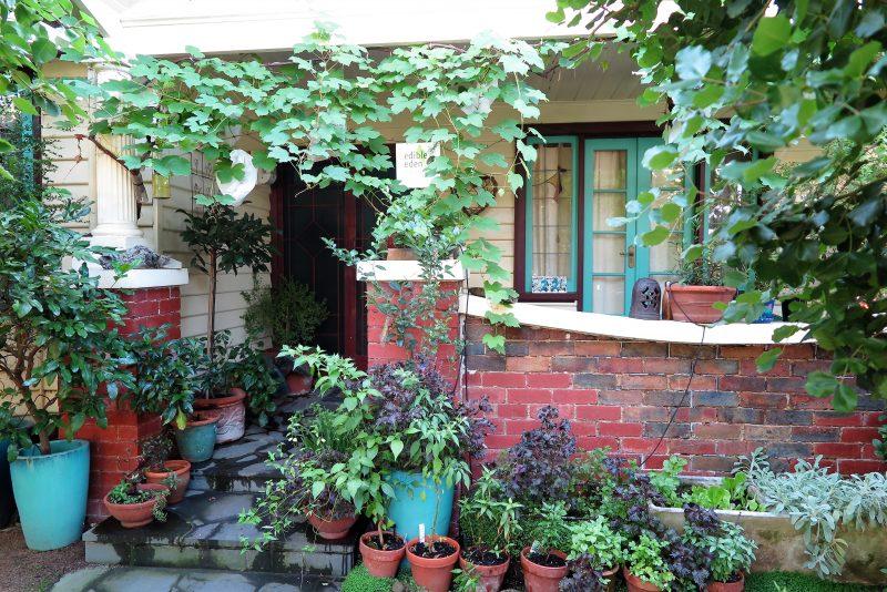 Grow-your-own from Edible Eden Design