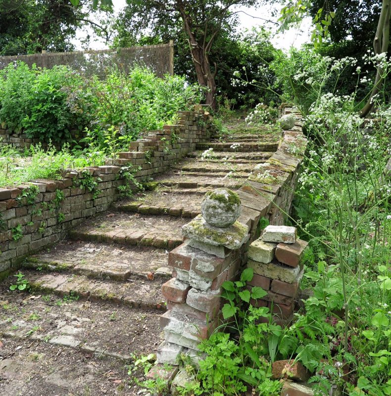 Cow parsley and old steps