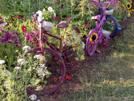 Children's bikes used as garden edging at RHS Hampton Court