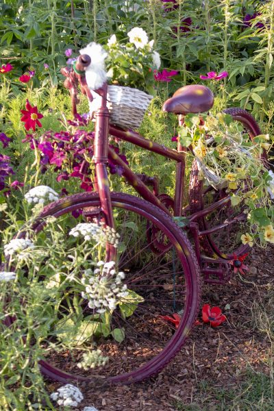 Recycle for unusual garden features.