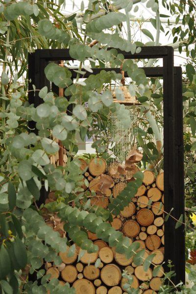 Eucalyptus and logs arch